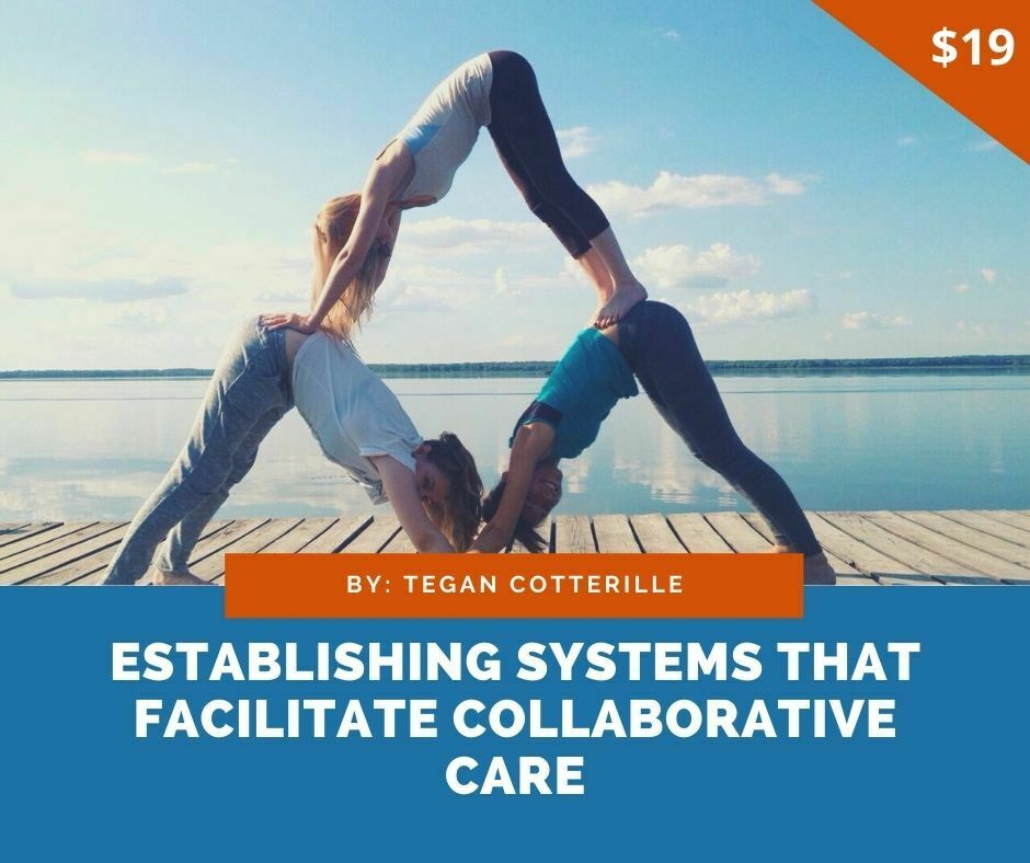 Establishing systems that facilitate collaborative care